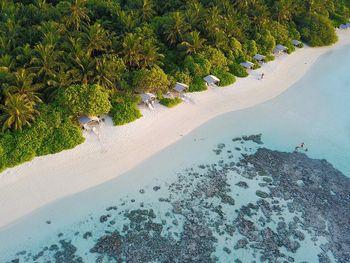 Plumeria Maldives (MDV: Мале из Алматы (GDS: Flydubai + Emirates))