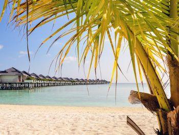 Sun Island Resort (MDV: Мальдивы + ОАЭ 3 ночи из Алматы (GDS))