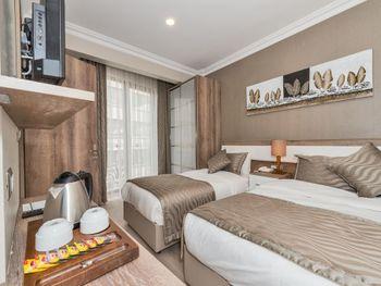 ALPHONSE HOTEL 3*