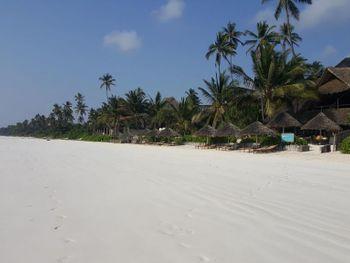 Sunshine Hotel Zanzibar. (Занзибар + ОАЭ (-2 ночи))
