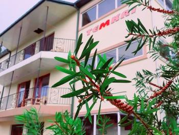 Hotel Temkri (Кутаиси(2ночи) + курорт)