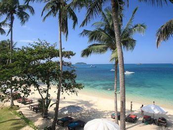 Koh Chang Cliff Beach Resort + Бангкок(1н.)